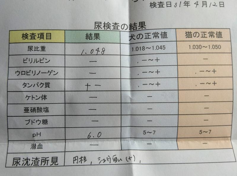 3回目尿検査の結果表