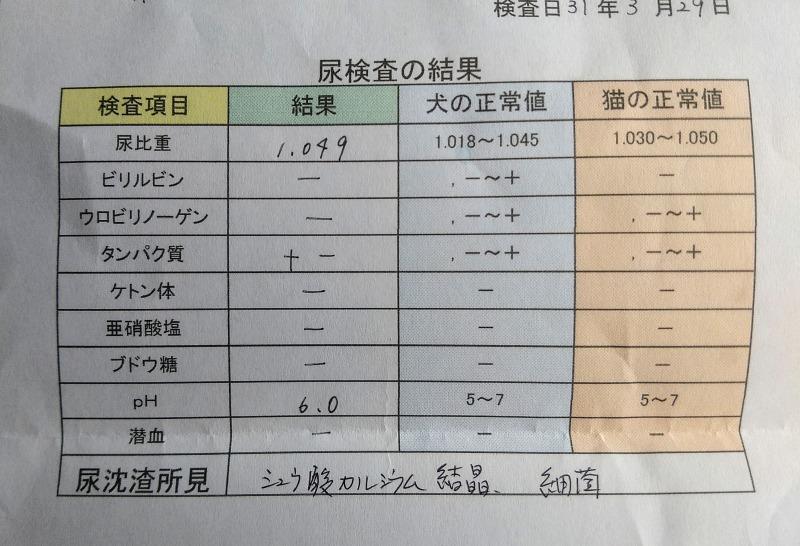 2回目尿検査の結果表